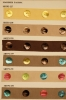 Shell Button Trims 6